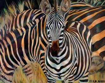 "Zebra Original Oil painting, 40"" x 30"" x 3/4"""