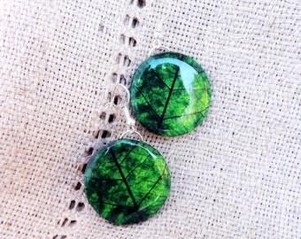 Green leaf earrings, Leaf earrings, Leaf jewelry, Green jewelry, Green earrings, Earrings, Jewelry, Summer jewelry, Green, Big earrings