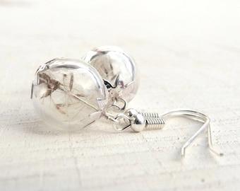 Real Dandelion Earrings, Dried Dandelion Seeds, Dandelion Jewelry