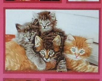 "Cat Crazy~Panel 24"" x 44""~Cotton Fabric,Craft,Quilt,~Robert Kaufman~AVT 15810-205~Fast Shipping,N288"