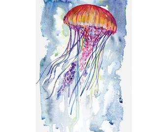 Watercolour Jellyfish