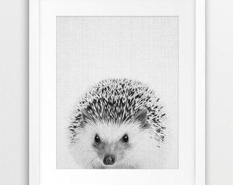 Hedgehog Print, Woodlands Nursery Wall Art, Hedgehog Photo, Cute Woodlands Animal, Black And White Animal, Kids Room Decor, Printable Art