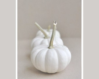 White pumpkins photography, white kitchen art, vertical print 11x14, 18x24, fine art print, still life food wall art, neutral kitchen decor