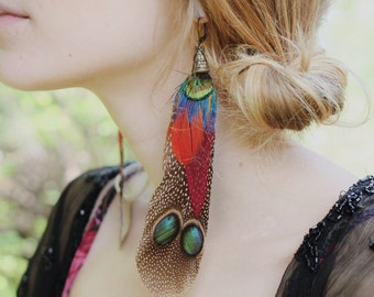 Naturally Molted Unharmed One of a Kind Colorful Feather Earrings