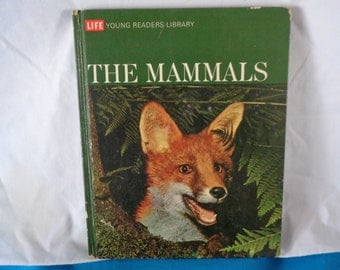 vintage 1970 Life Young Readers Library The Mammals book