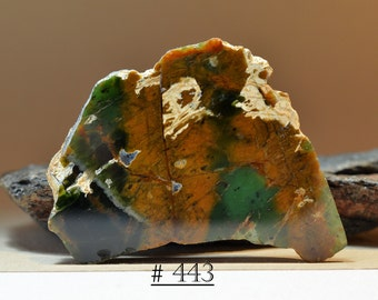 Gorgeous Piece of Chrome Chalcedony (Silicified Serpentinite) from Australia