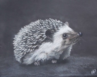 Happy Hedgehog - Limited Edition Mounted Artist print hand finished and signed