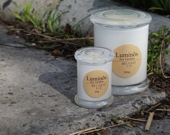 Luminös Soy Candle Value Packs