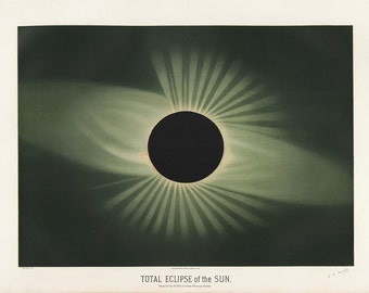 Etienne Leopold Trouvelot: Total Eclipse of the Sun. (The Trouvelot Astronomical Drawings 1882) Astronomy/Space Print/Poster (00105)