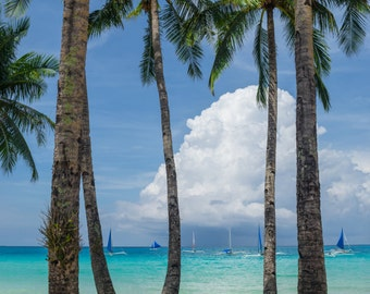 Palm Trees in Boracay, Philippines-Beach Ocean View-Travel Photography-Wall Art-Fine Art Print-Home Decor