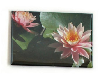 Water lillies magnet