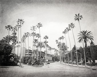 California Photography, Beverly Hills Hotel, Los Angeles, Black and White, Palm Trees, Summer, Fine Art Print, mint green, blue, Wall Art