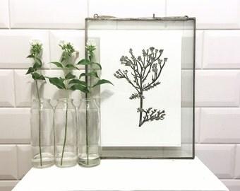 A4 Amsterdam Wild Flower Linocut Print: Tansy