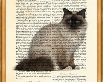 Birman Cat DICTIONARY ART PRINT on Vintage Dictionary Page 10'' x 8'' from Antique Book