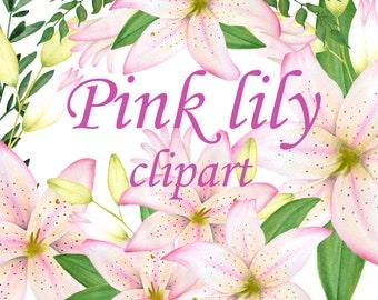 Lily clipart, Watercolor lilium clipart, Hand painted flowers, Watercolor lily, Watercolor flowers, Wedding flowers clipart, Invitation art