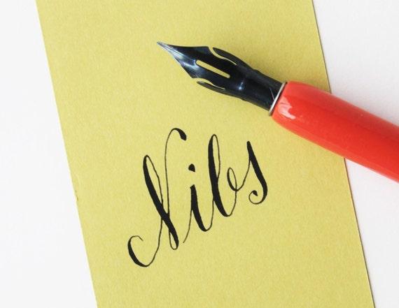 Brause Steno Blue Pumpkin Calligraphy Nib Set Of 2