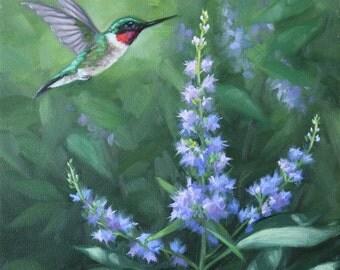 Hummingbird painting - Ruby throated hummingbird - bird painting - hummingbird print - Open edition print