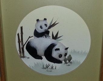 Beautiful Panda Bear Shadow Box