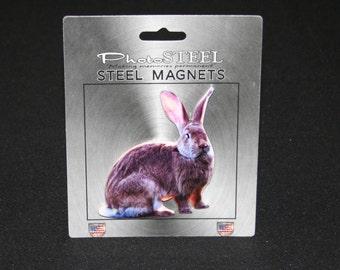 Magnet Rabbit