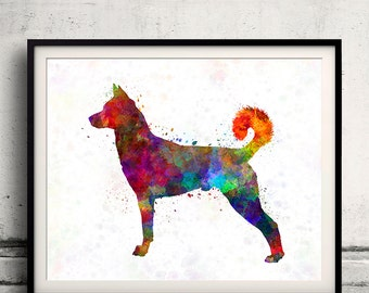 Canaan Dog 01 in watercolor 8x10 in.to 12x16 in.Fine Art Print Glicee Poster Decor Home Watercolor Illustration - SKU 1042