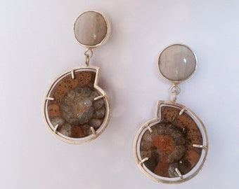 Ammonite Fossil And Jasper Earrings