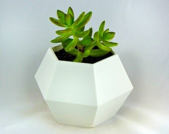 Polygon Planter Geometrical Vase Home Decor Best Gift Cactus Wedding