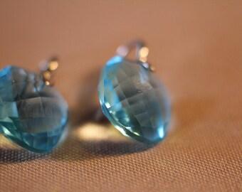 Blue Paste Jewellery / Silver earrings