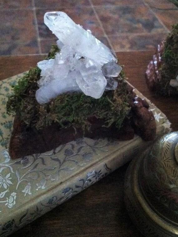 CRYSTAL MEDITATION GARDEN, Crystal Cluster on Manzanita Burl, Curved, Channeling, Abundance Cluster, Sedona, Reiki, charged, Micro Garden,