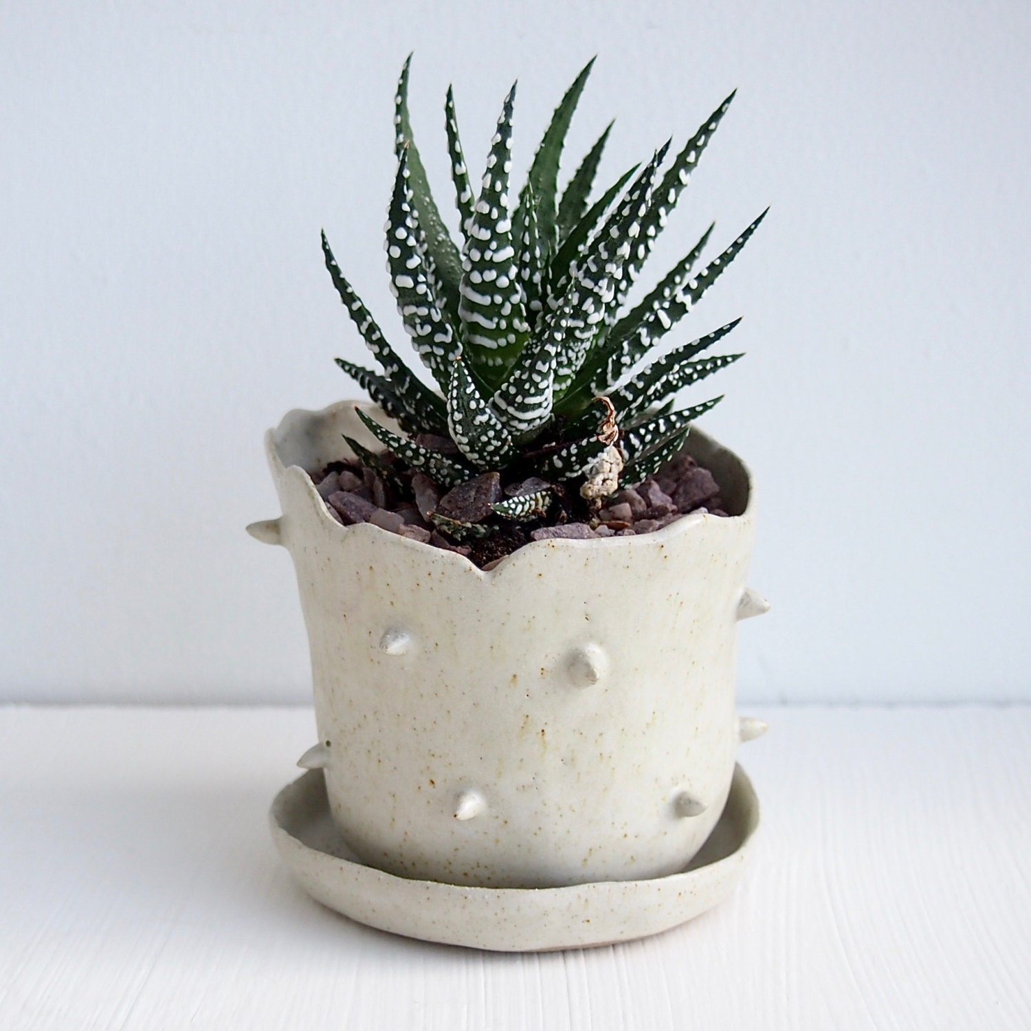 Oatmeal White Spiky Ceramic Planter Saucerhandmade By