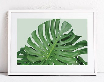Green Plant Print, Plant Photography Plant Art INSTANT DOWNLOAD ART Green Leaf Art, Nature Wall Art Print Monstera Print Printable Art 24x36
