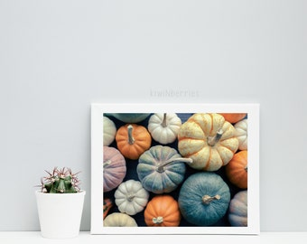 Pumpkin wall art - Autumn fall decor - Assorted pumpkins photo - Pumpkin wall art - Printable gift - Pumpkin photography - Thanksgiving gift
