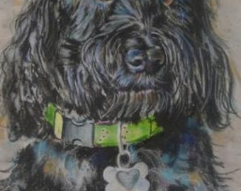 Commissioned Pastel Portrait of your Dog or Family Member
