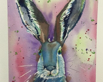 Colorful Hare