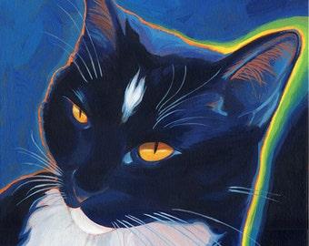Neon Tuxedo Cat