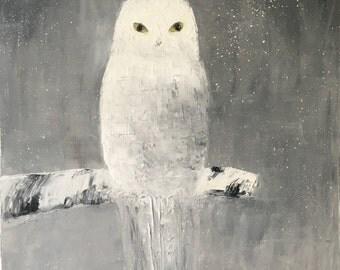 Snowy Owl Study