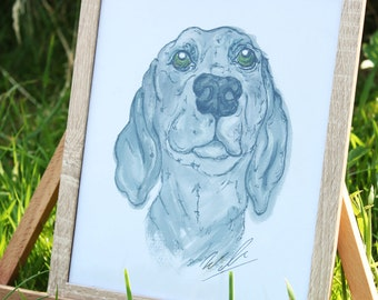 Weimaraner original pet portrait and print watercolour and pen and ink. Bespoke dog and animal painting, framed and mounted