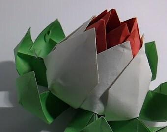 Sharp Lotus