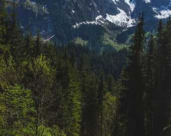 Switzerland Photography, Travel Photography, Swiss Alps, Mountain Photography, Snow Capped Mountains, Gstaad Mountains, Gstaad