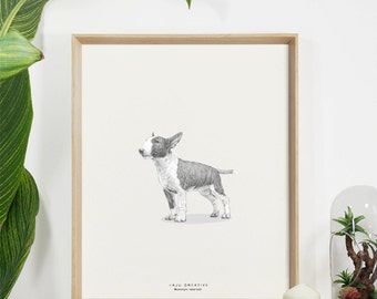 Bull Terrier Original Sketch Print