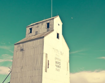 "grain elevator wall art, large art, large wall art, rustic wall art, industrial, wall art prints, fine art photography, art -""Tests of Time"""