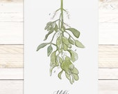 Mistletoe Study - Quartz Collection / Watercolor botanical wall hanging, wood trim art. Scientific Canvas Posters Chart- More Options