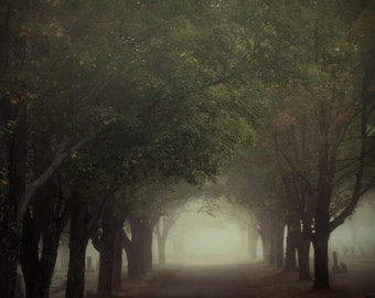 cemetery fog morning headstones nature photography fine art photography home decor