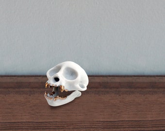 Winter sale! Squirrel Monkey Skull