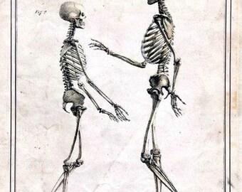 Come on Dad! Skeletons Notecard Halloween Handmade Vintage Image