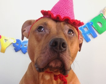 Dog Birthday Hat, Party Hat for Dogs, Gotcha Day Hat