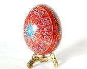 Dark red with Turquoise chicken pysanka, Ukrainian Easter egg