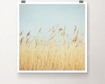 Breeze - Fine Art Print Seaside Ocean Grass Wind Beach Summer Sky