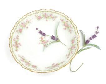 Limoges Bowl - French Bowl, Fruit Bowl, Antique Bowl, Pink and Green Floral Bowl, Soup Bowl, Cereal Bowl, Bawo & Dotter, c.1890s