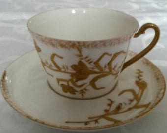 Limoges Tea Cup and Saucer by Hinrichs & Co circa early 1900's-  DR
