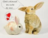 ceramic rabbit, cotton ball dispenser, Hammersley, cream, floral, peach, pink, bunny rabbit, cottage chic, vintage bath